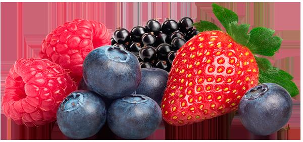 I nostri nettari - Nettare di frutti di bosco