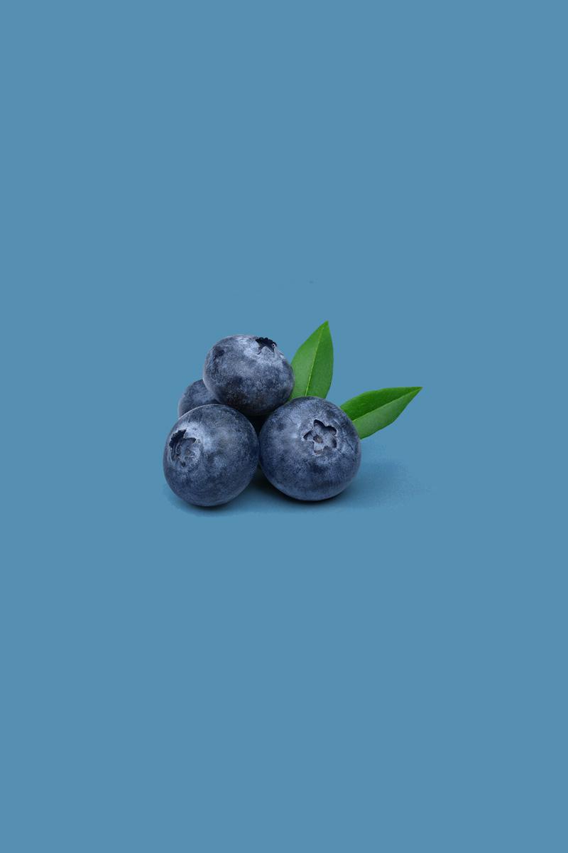 Mirtillo piccoli frutti