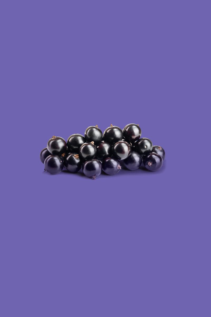 Ribes nero piccoli frutti